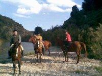 Excursión hasta la cola del Pantano Tibi