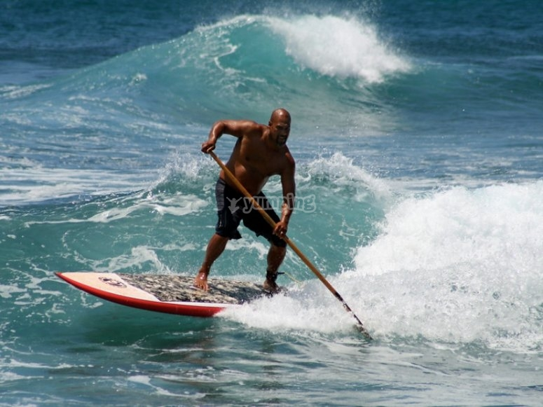 Rental of complete SUP equipment in Alicante