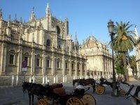 Catedral y coches de caballos
