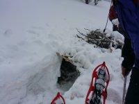 Raquetas sobre la nieve