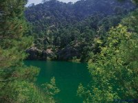 森林中的湖泊