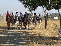 Paseo a caballo por Utrera