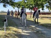 Disfrutando de una ruta a caballo por Utrera