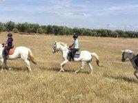 Excursión a caballo por Utrera
