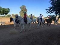 Saliendo del centro con los caballos