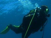 Inmersiones por las aguas del mar de Alborán