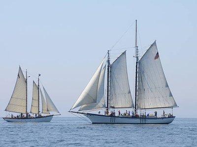 Gulet穿越阿尔梅里亚湾1:30小时