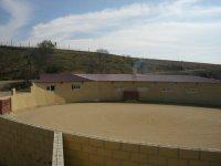 Plaza de tientas vacia