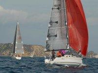 Three sailboats sailing