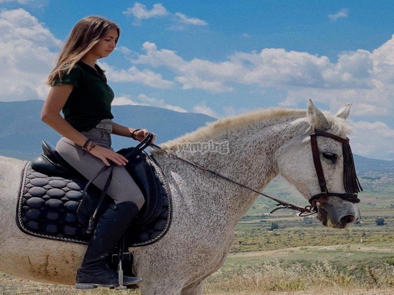 Imparare ad andare a cavallo con il maneggio