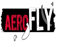 Aerofly Paramotor