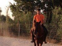Horse riding route through Manises