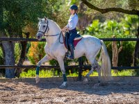 Horse riding class for all levels Felanitx 1h