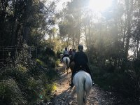 Horseback riding to Felanitx monasteries and food