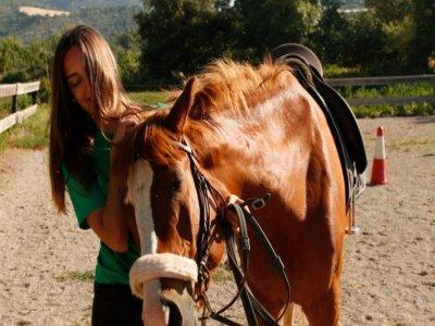 Cavalls de Baldomar Rutas a Caballo