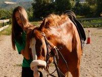 看着骑马的马