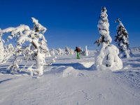 在冻雪中的雪靴