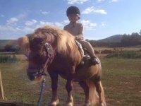 男孩骑小马