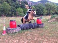 他caballo.jpg类跃马标志Baldomar cavalls