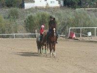 Pony y  caballo