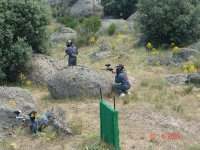 Paintball en campo natural