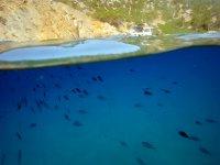 双体船水下视力给马尔格拉茨群岛儿童