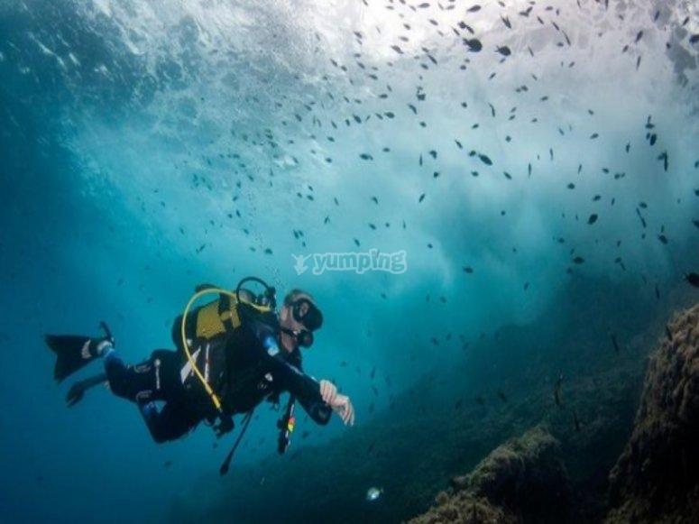 阿雷纳尔海滩潜水洗礼