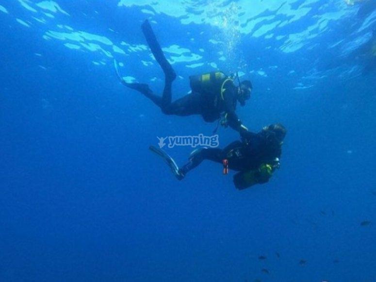 哈瓦那潜水洗礼课程