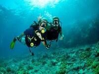 哈瓦那入门潜水课程