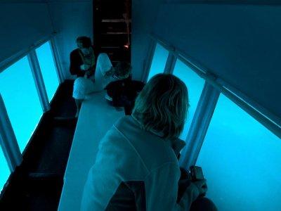 双体船的水下视野和Pto Andratx的食物