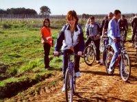 Alquiler de bici de montana en Toledo