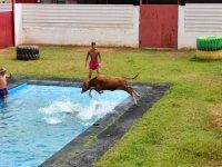 Capea en la piscina