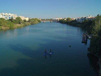 Ruta de paddle surf en Sevilla por el Guadalquivir