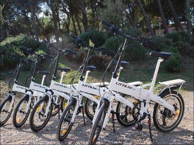Alquiler de bici eléctrica Ribera de Navarra 1 día