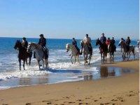 Ruta a caballo al Alto del Monte Siradella 1 hora