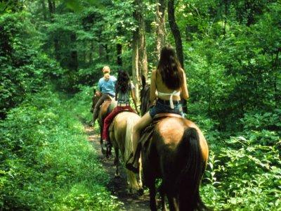 Ruta a caballo a los acantilados de Ribeira Sacra