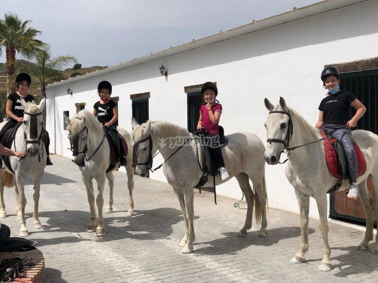 Campamento con caballos en Málaga