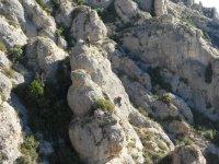 Increible jornada de escalada en roca