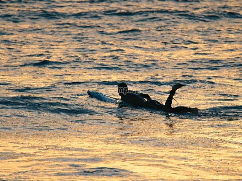 Surf en la playa de las Américas