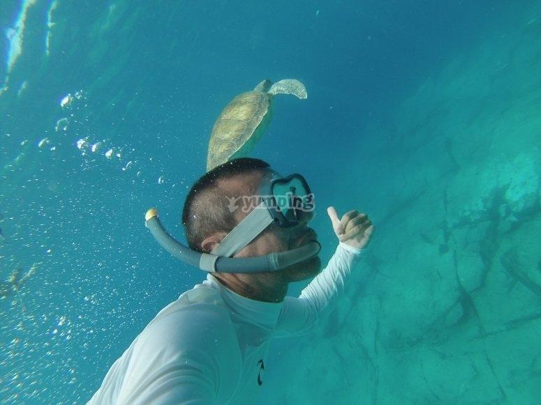 Paseo de SUP con snorkel por Tenerife