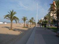 Imagine going for the beach in bicibirra