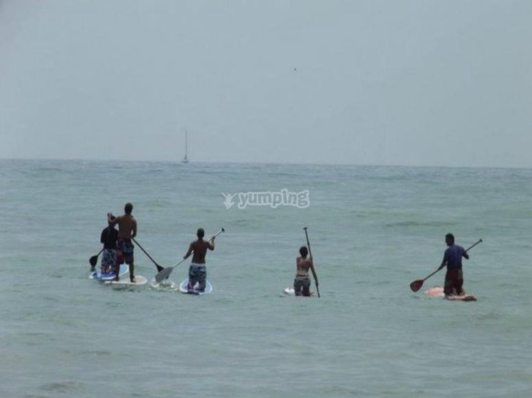 Stand up paddle surfing in group