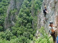 via ferrata surrounded by a beautiful forest