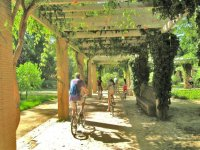 discovering Seville by bike