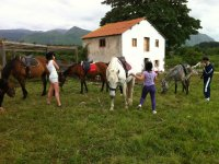 Palombina Planet horse riding lessons