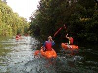 Percorso in kayak attraverso la foresta di Uba 90 minuti