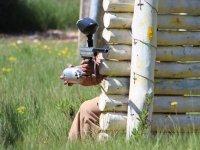 射击夫妇射击木材保护后攻