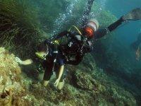 Inmersiones por los bosques de posidonias