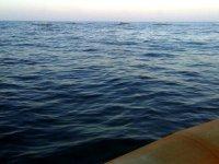 Por la costa murciana en kayak