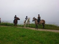 By horse in groups at Asturias from Llanes